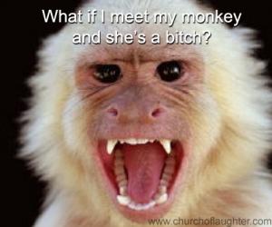 Meet my monkey